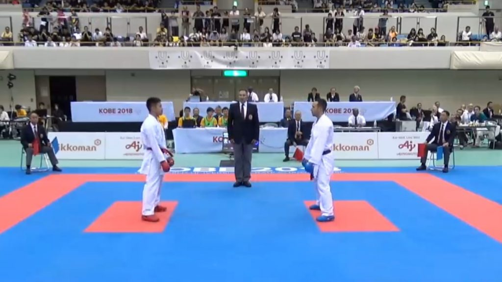 All Karate Styles and Their Differences