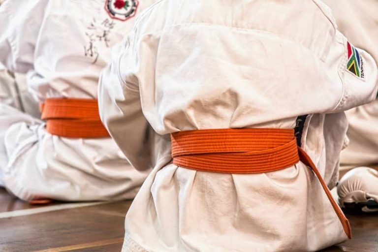 Karate Belts: Ranking System Explained