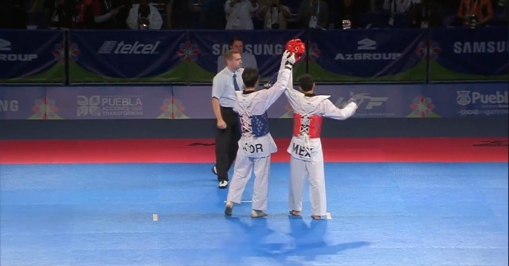 ITF and WT Taekwondo. What Are the Differences?