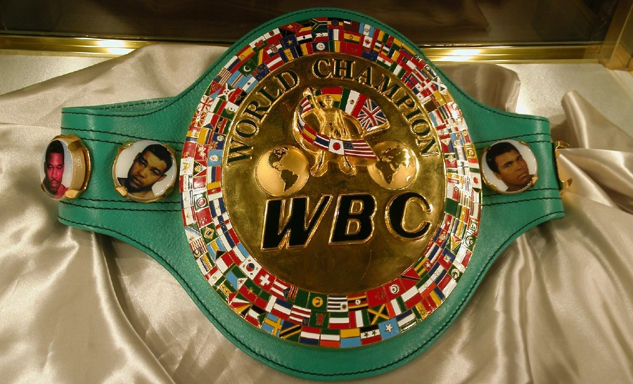 Top Boxing Organizations and Belts (Ranked)