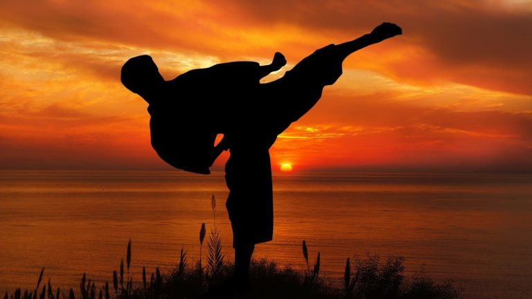 Difference Between Kyokushin Karate and Shotokan Karate