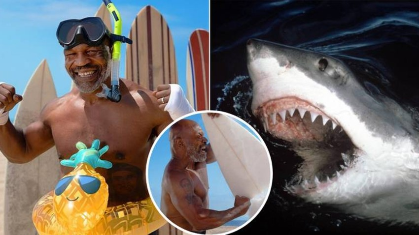(VIDEO) Mike Tyson Had a Three Rounds Duel With a Shark and Won!