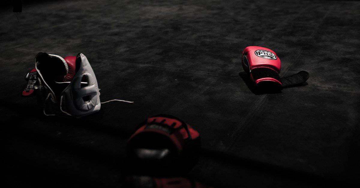 12 Best MMA Equipment Brands Ranked (2020)