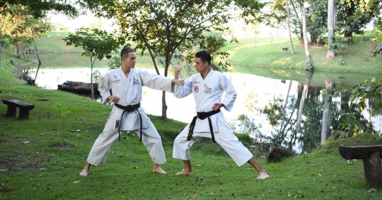 What Is Kenpo Karate?