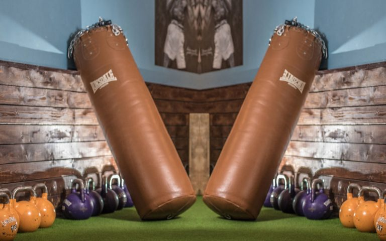 Best Punching Bags in 2021: We Tried Them All!