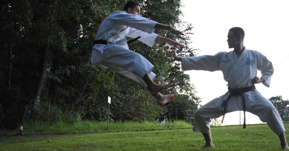 Is Goju-Ryu Karate Any Good? The Answer May Surprise You