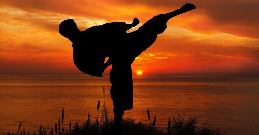 Is Isshinryu Karate Effective?