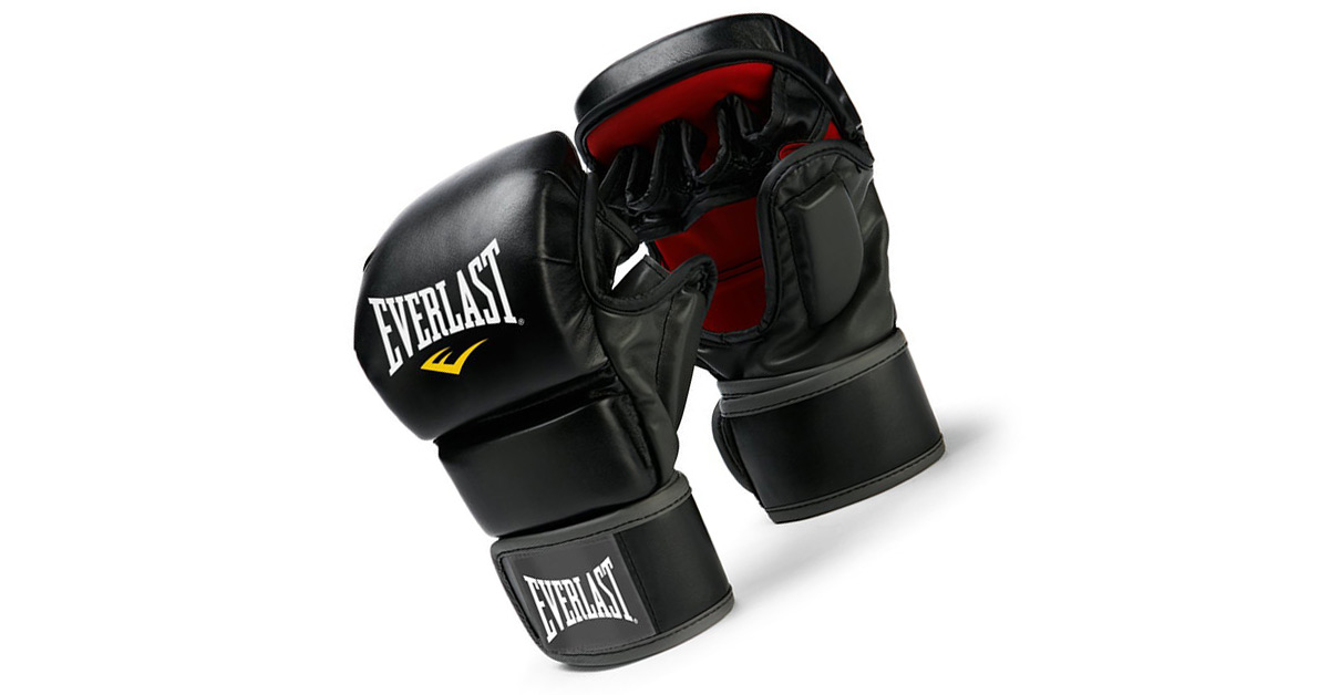 Everlast Train Advanced Review