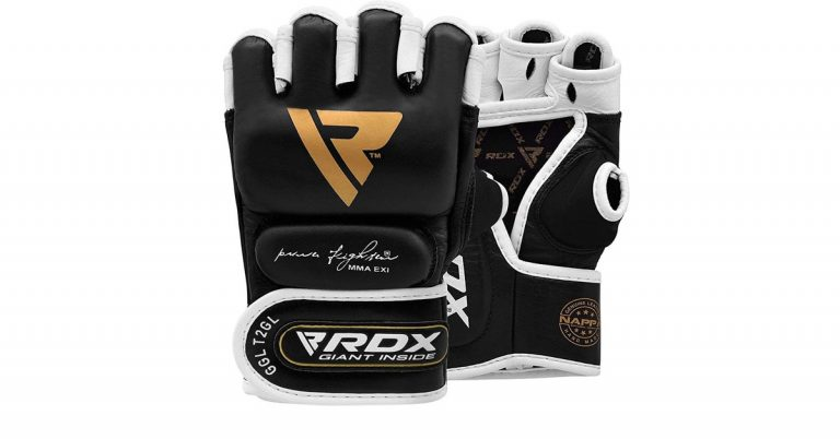RDX MMA Gloves for Grappling Martial Arts Review [2021]
