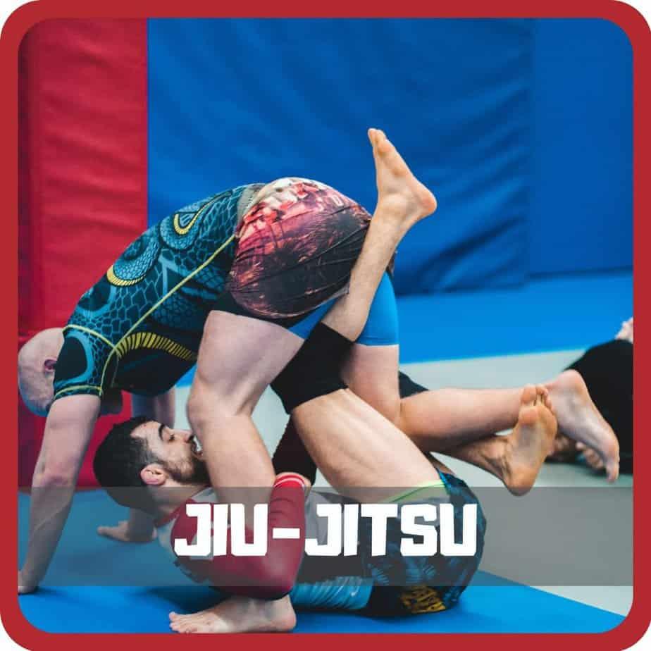home jiu jitsu