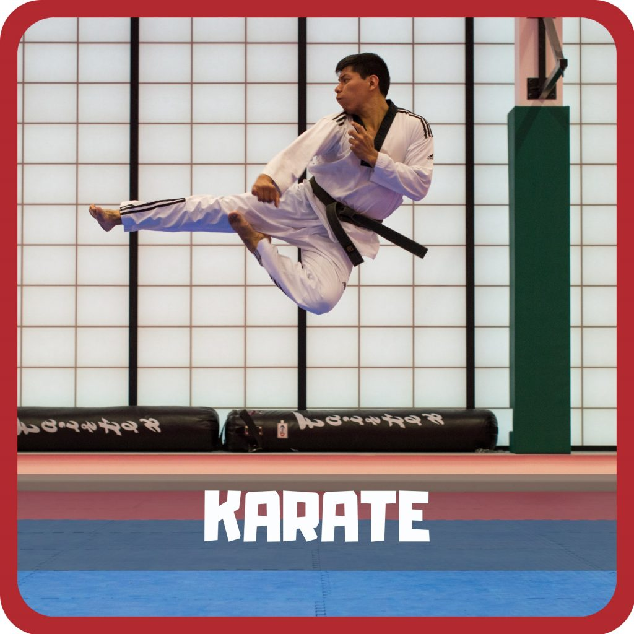 home karate