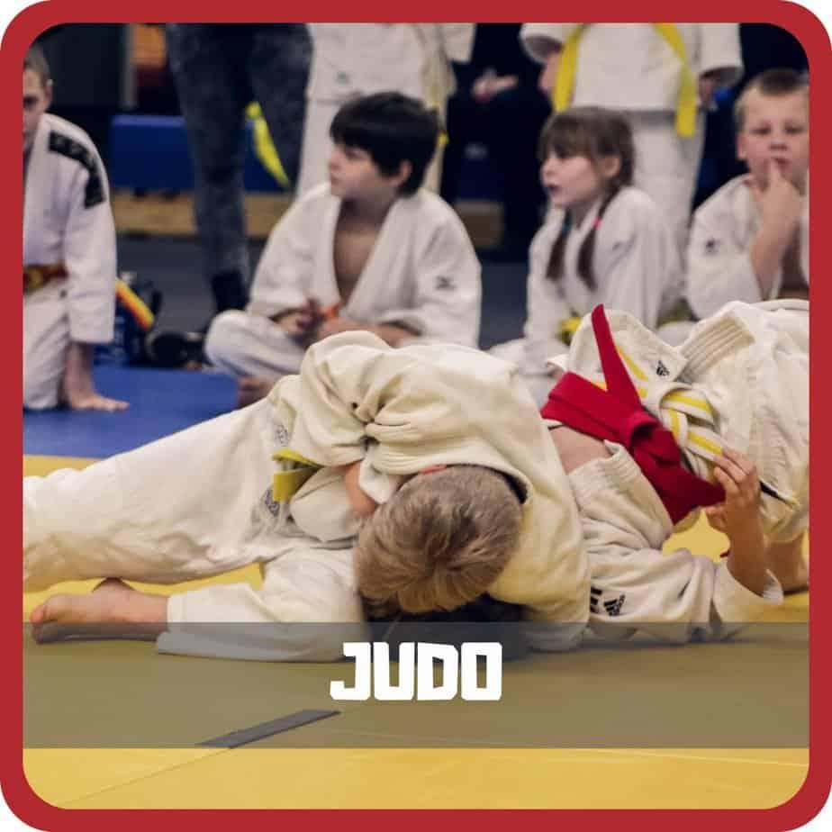 home judo