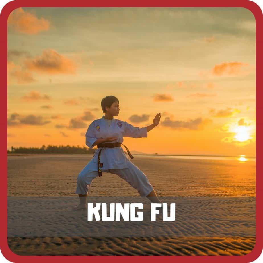 home kung fu
