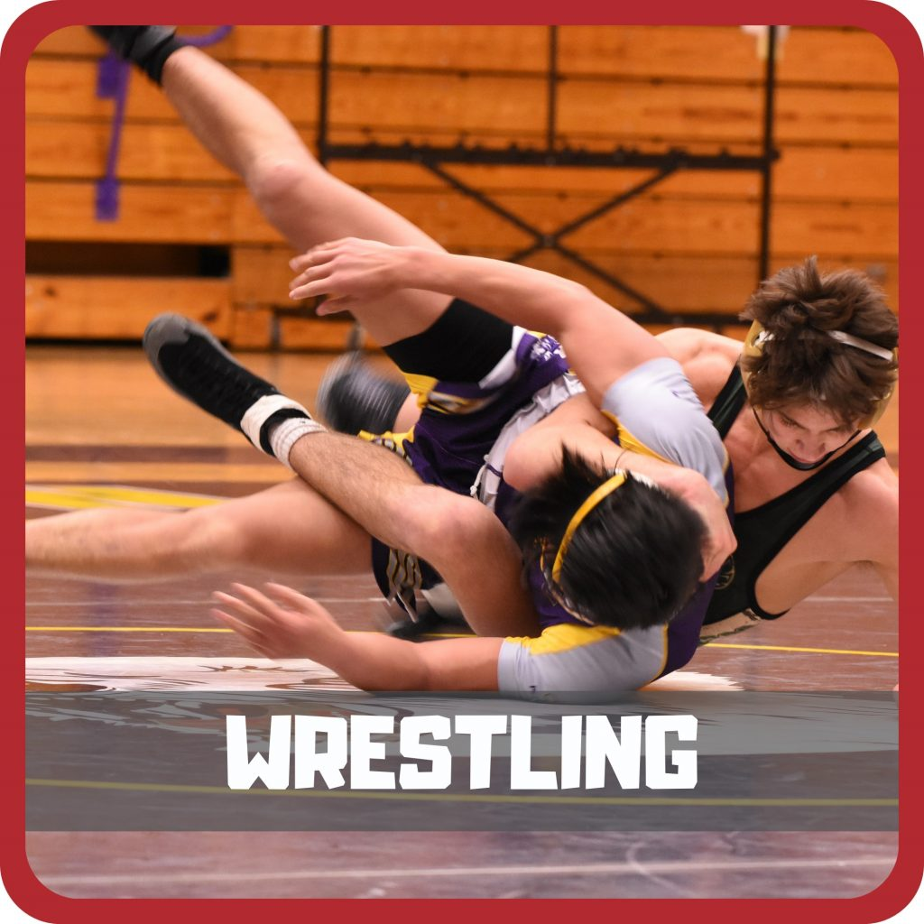 home wrestling